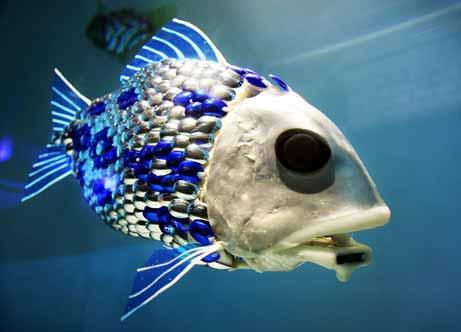 obot_fish